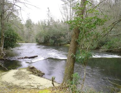 2 minute walk to Horsepasture River and creeks