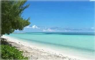 Grand Bahama Island condo rental - Beautiful Romantic Beach 'Hideaway's' all over the Island !