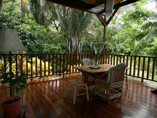 Montezuma villa photo - The 2nd floor deck puts you at eye level with visiting monkeys.