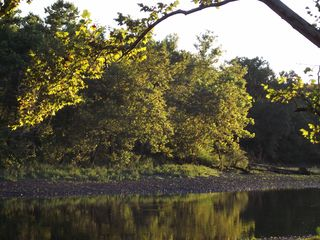 Branson condo photo - Autumn on the Lake.