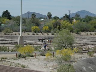 Horses, Bike Riders and Walkers on the Rillito Trail - Tucson condo vacation rental photo