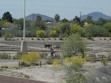 Horses, Bike Riders and Walkers on the Rillito Trail
