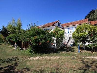Apartment Archontou in Ag. Georgios Pagi, about 300 meters from the sandy beach