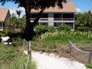 View of Cottage from the Captiva Beach - Captiva Island cottage vacation rental photo
