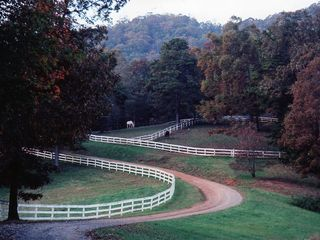 Franklin estate photo - Welcome to Steeplechase
