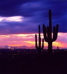 Tucson bungalow photo - Magnificent sunsets