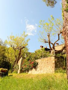 Molino del Piano farmhouse rental - a view of Castellare wall