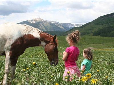 Fantasy Ranch - Mt. Crested Butte