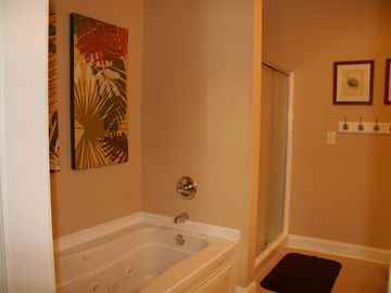 Master Bath Downstairs has double sinks to right!