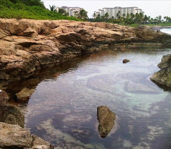 Ko Olina villa rental - One of many tidal pools along the coast filled with colorful fish, not people.