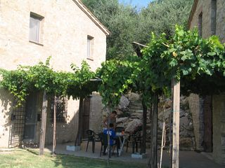Penna in Teverina villa photo - The two structures give a village feel to the patio beneath the lush pergola.