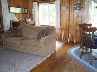Port Sanilac cottage photo - New sleeper in living/dining area.