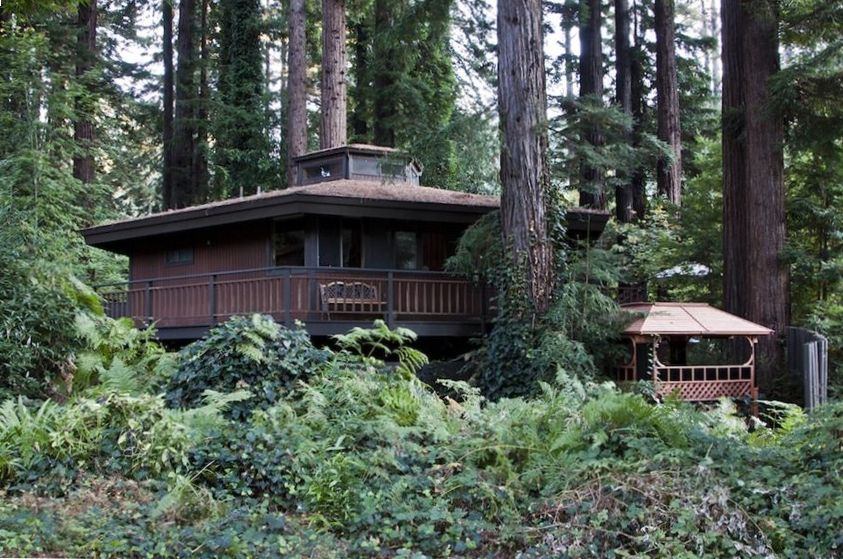 Monte rio house rental honeycomb cabin on northwood for Russian river cabins guerneville