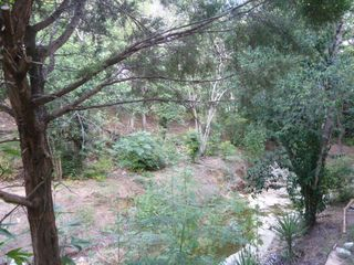 Austin house photo - Right view of wet weather creek. Tons of trees and privacy