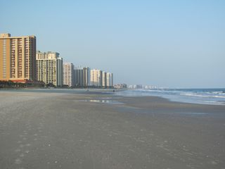 Kingston Plantation condo photo - Wide beach for sunning, making sand castles, and memories.