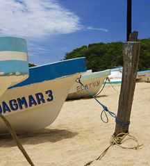 Huatulco condo photo - Fishing tours
