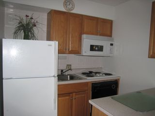 Forest Beach condo photo - Renovated, Fully Equipped Kitchen, with Dishwasher