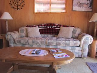 Idyllwild cabin photo - The den has a couch with a comfortable queen bed, a TV and a view of the deck