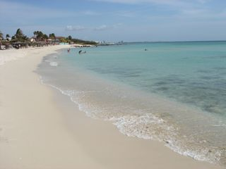 Aruba studio photo - ARASHI beach 3 minutes walk distance