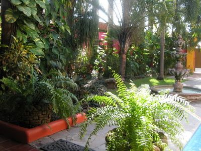 LUSHES TROPICAL GARDEN