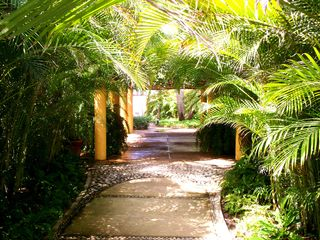 Punta Mita condo photo - Jungle atmosphere makes for a very private and relaxing vacation...