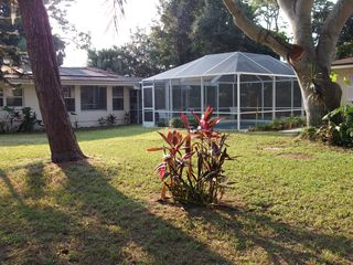 Sarasota house photo - Large yard to enjoy a quiet and relaxing afternoon.