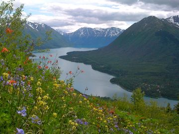 View from Slaughter Ridge overlooking Cooper Landing and Kenai Lake.
