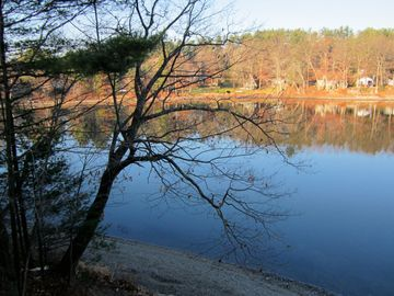 Late Fall on Robinson Pond