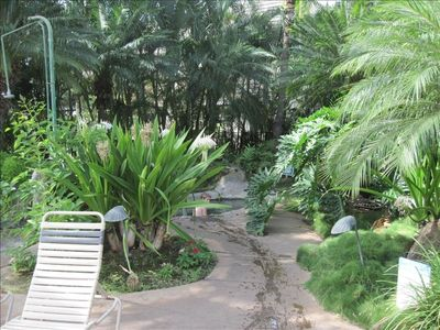 Tropical landscaping by hot tub