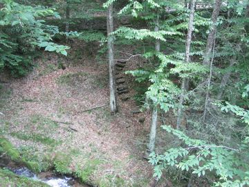View from cabin deck showing steps to walk down to the creek