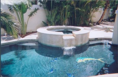 Pool/Spa Tub