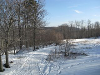Windham chalet photo - View from the rear!!! VAST trail and ski slope