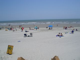 Isle of Palms condo photo - Our beach in High Season