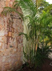 Playa Hermosa house photo - Outside pool shower w/ bamboo