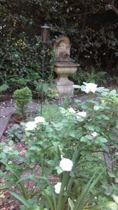 Garden in May with roses and fountain.