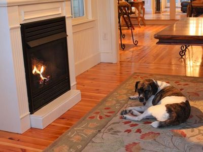 Provincetown condo rental - Scout likes the fireplace