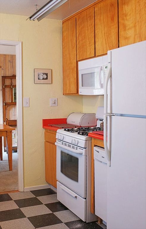 Gas stove, microwave, dishwasher and fridge.