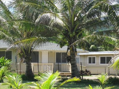 Hauula cottage rental - Side View of Cottage which is situated to the right of the CocoNut trees.
