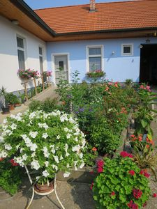 Accommodation near the beach, 80 square meters, , Sankt Andra Am Zicksee, Burgenland