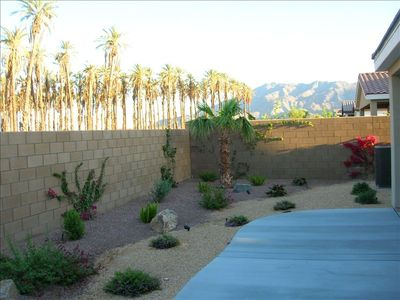 Backyard overlooking Date Palms