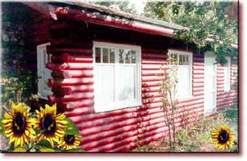 Cambria cabin rental - Classic Antique Cabin in Cambria