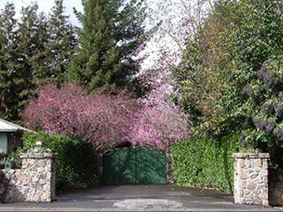 St Helena estate rental - main gate