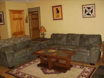 Lower level living area (lower level also has a second full size kitchen)