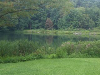 Seven Springs chalet photo - Fishing pond