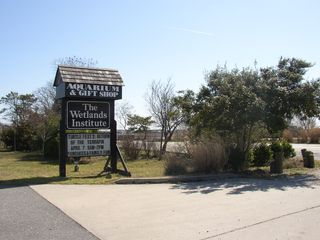 Stone Harbor townhome photo - Lots of family activities at The Wetlands Institute on Stone Harbor Boulevard.