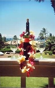 or simply enjoy your favorite bottle of wine on the private lanai.
