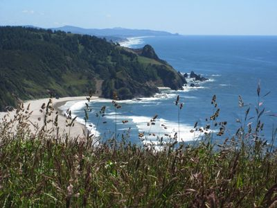 On the Cascade Head Trail