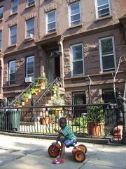 Brooklyn townhome photo - We're on a tree-lined street in a quiet, safe, and family-oriented Neighborhood