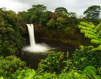 Rainbow Falls near Hilo. Photo by former guest Clive Schaupmeyer.