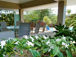 Vieques Island cottage photo - Grill on our gas grill and dine poolside in the gazebo.